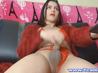 Gorgeous Shemale Got Pleasure By Jerking The brush Cock